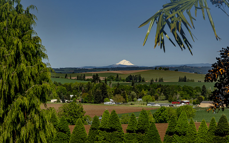 magnificent mountain view from Shaw Country Inn, an Event Venue in Oregon